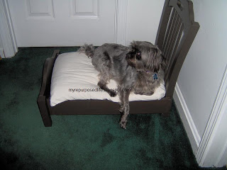 dog bed old chair repurposed