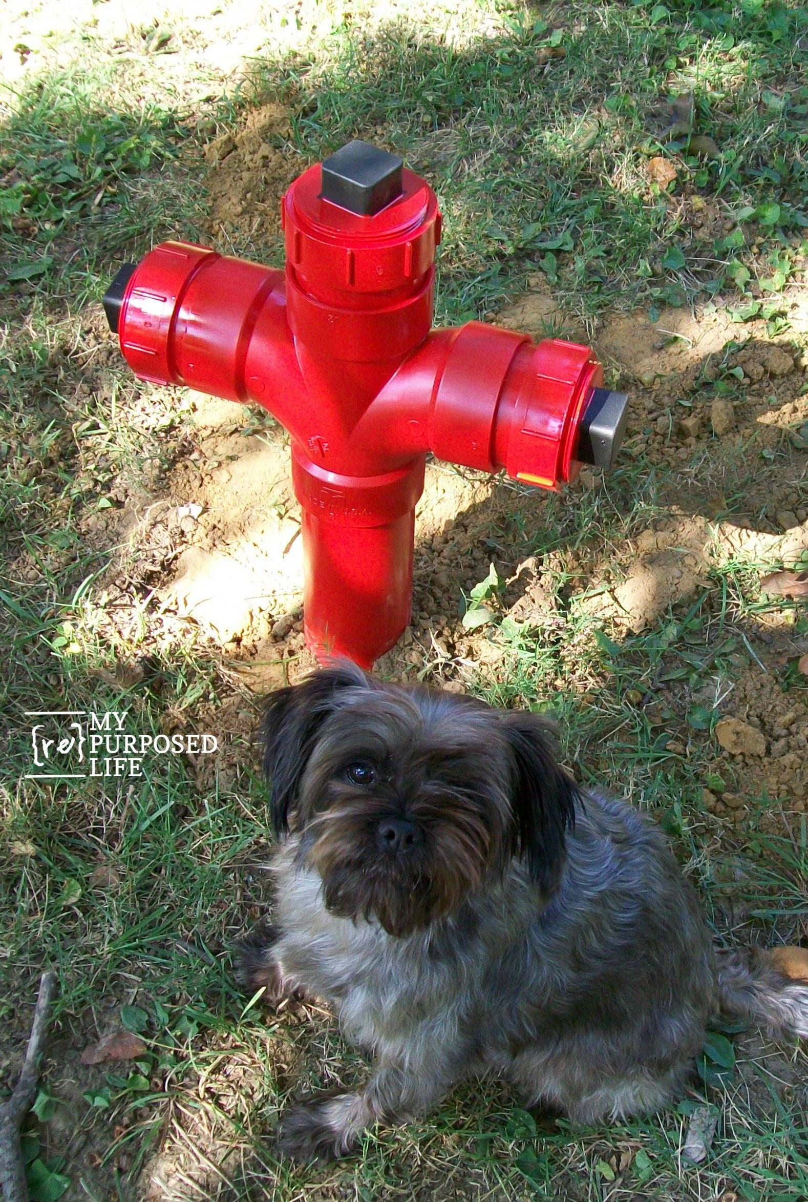 Diy Fire Hydrant My Repurposed Life 174