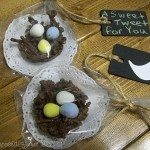 Chocolate Bird Nests (bird themed bridal shower)