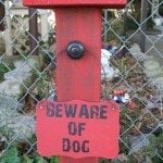 easy-vinyl-sign-beware-of-dog