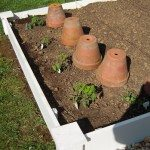 how-to-raised-planter-beds