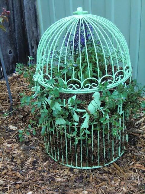 birdcage planter