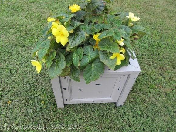 diy easy planter