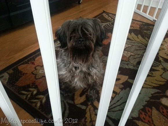 make your own pet gate from crib rails