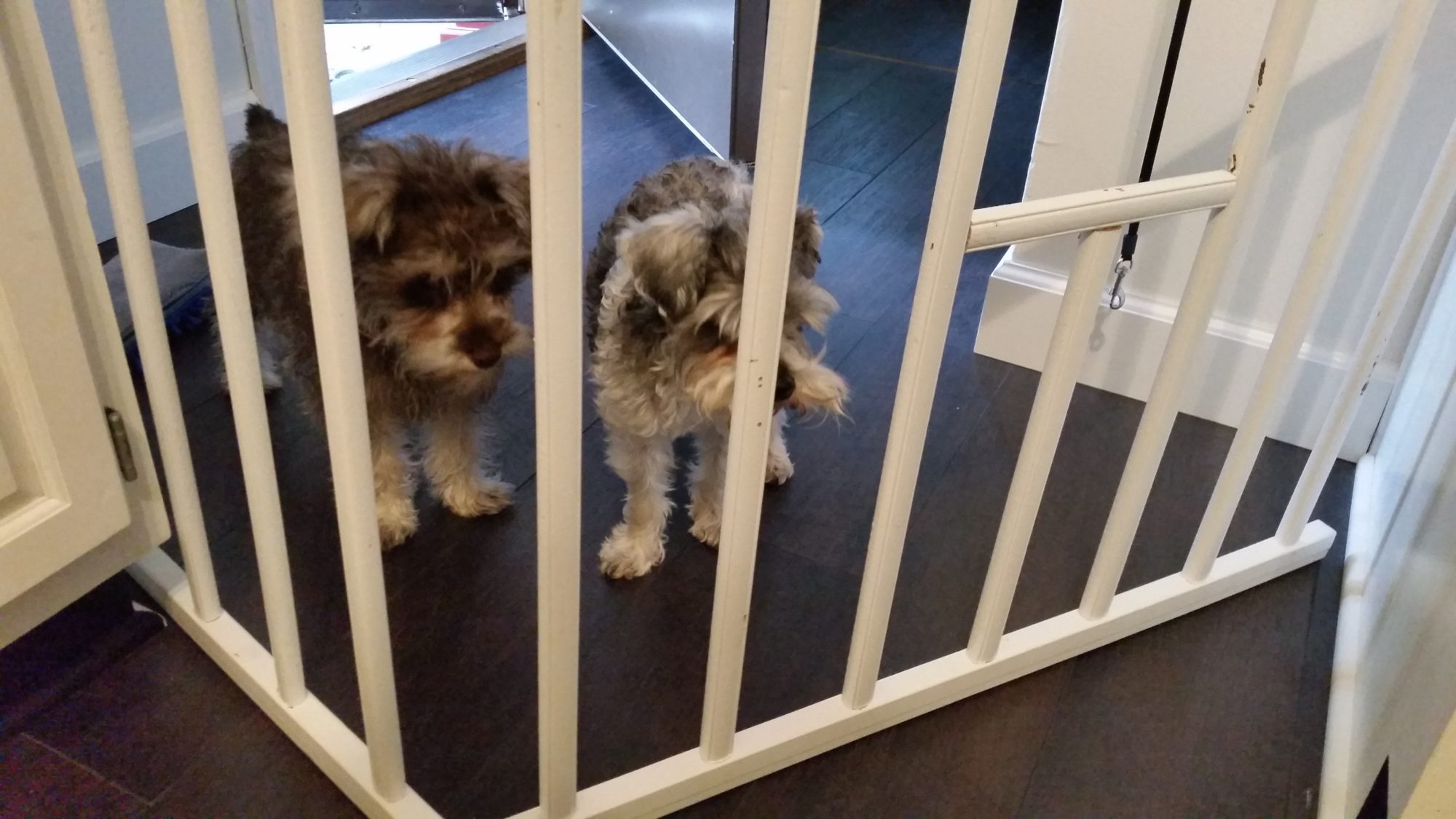 recreate doggy remove a gate pin crib of baby the used with long puppy cribs sides