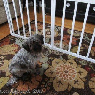 DIY Doggie Gate {crib rails}