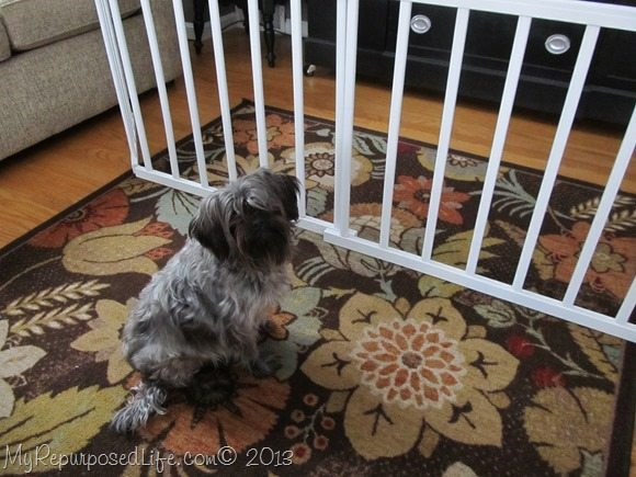 dog gate from repurposed crib rails