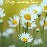5-tips-spring-cleaning.jpg