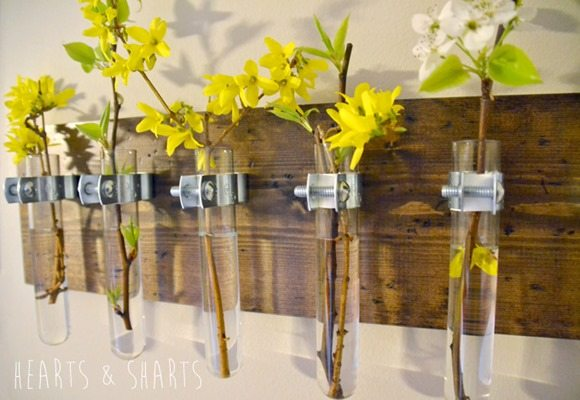Hanging-Test-Tube-Wall-Planter