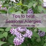 fight-allergy-tips-featured