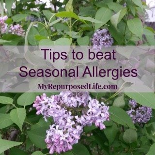 My Bloomin' Allergies #HealthierHome #ad