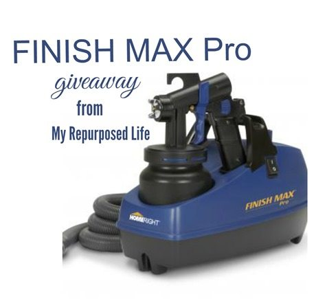 finish-max-pro-giveaway