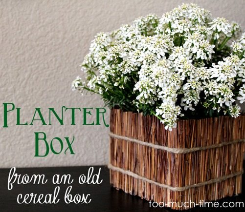cereal-box-into-planter