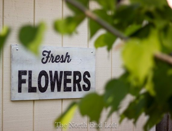 make-your-own-easy-country-signs