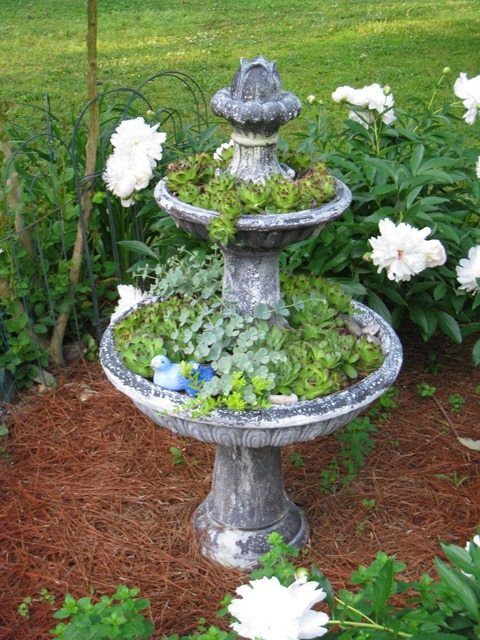 old-repurposed-fountain-planter