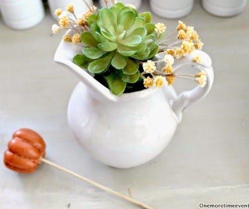 succulent-pumpkin-vignette