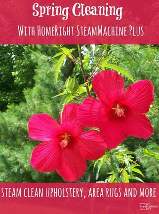 Spring Cleaning with HomeRight SteamMachine Plus