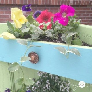 close up of top planter