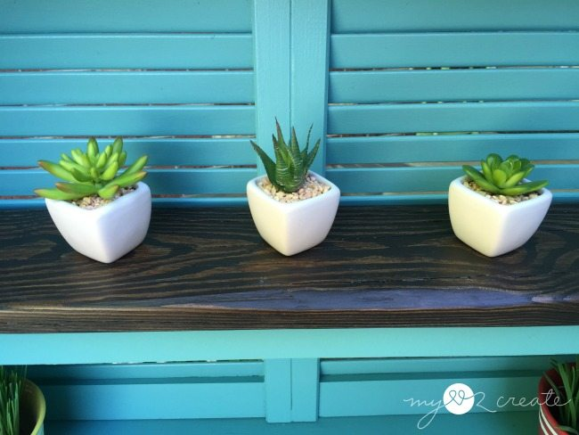 succulents displayed on potting bench shelf