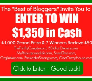 Holiday Cash Giveaway $1000