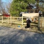 last picket in place | DIY Picket Fence