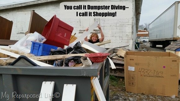 you call it dumpster diving