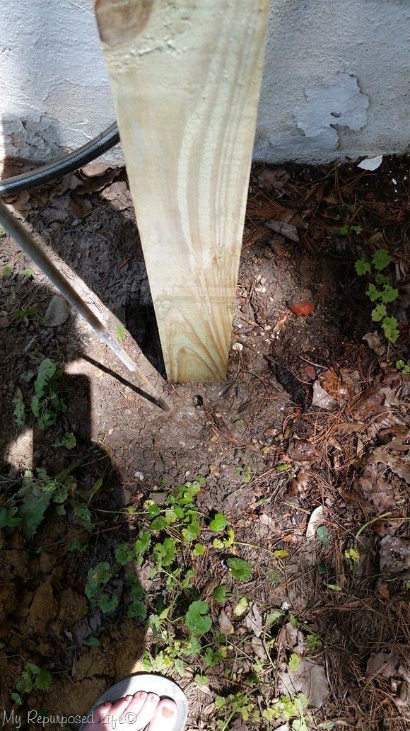 tap rod into concrete
