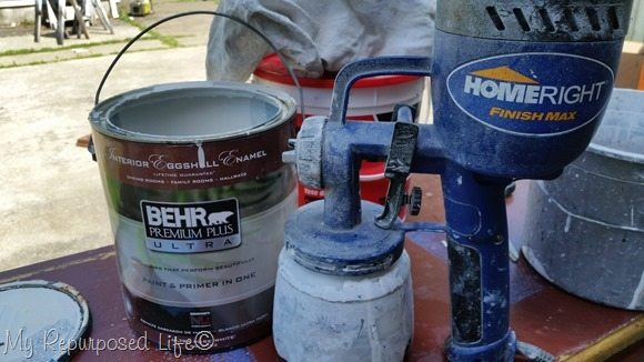 Homeright Finish Max and Behr paint