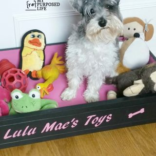 Repurposed Drawer Dog Bed toy Box