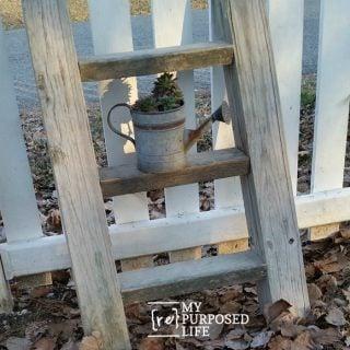 Rustic Ladder Plant Display