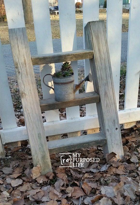 diy rustic ladder plant display MyRepurposedLife.com