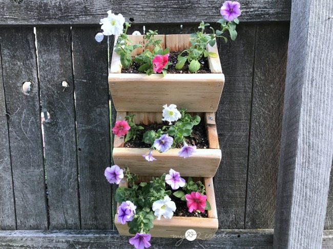 Full front of hanging planter
