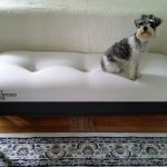 Coffee Table Bench with Easy Button Tufted Upholstery You Will Want to Try