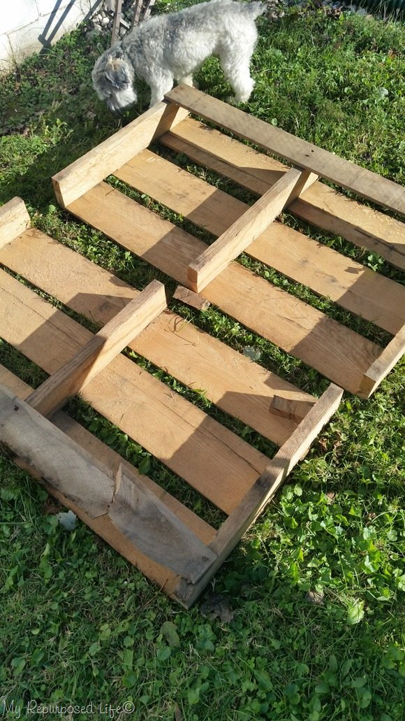 cut pallet with circular saw