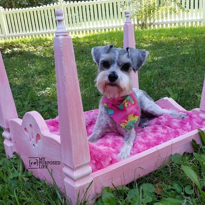 repurposed table legs diy doll dog bed MyRepurposedLife.com