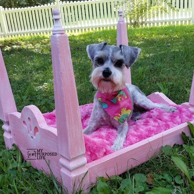 repurposed table legs diy doll dog bed MyRepurposedLife.com