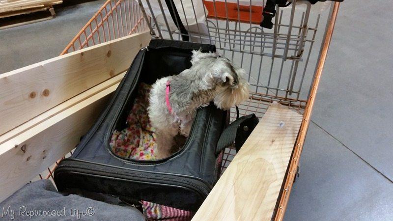 lulu mae likes home depot