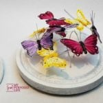 Cheese Cloche Butterfly Display