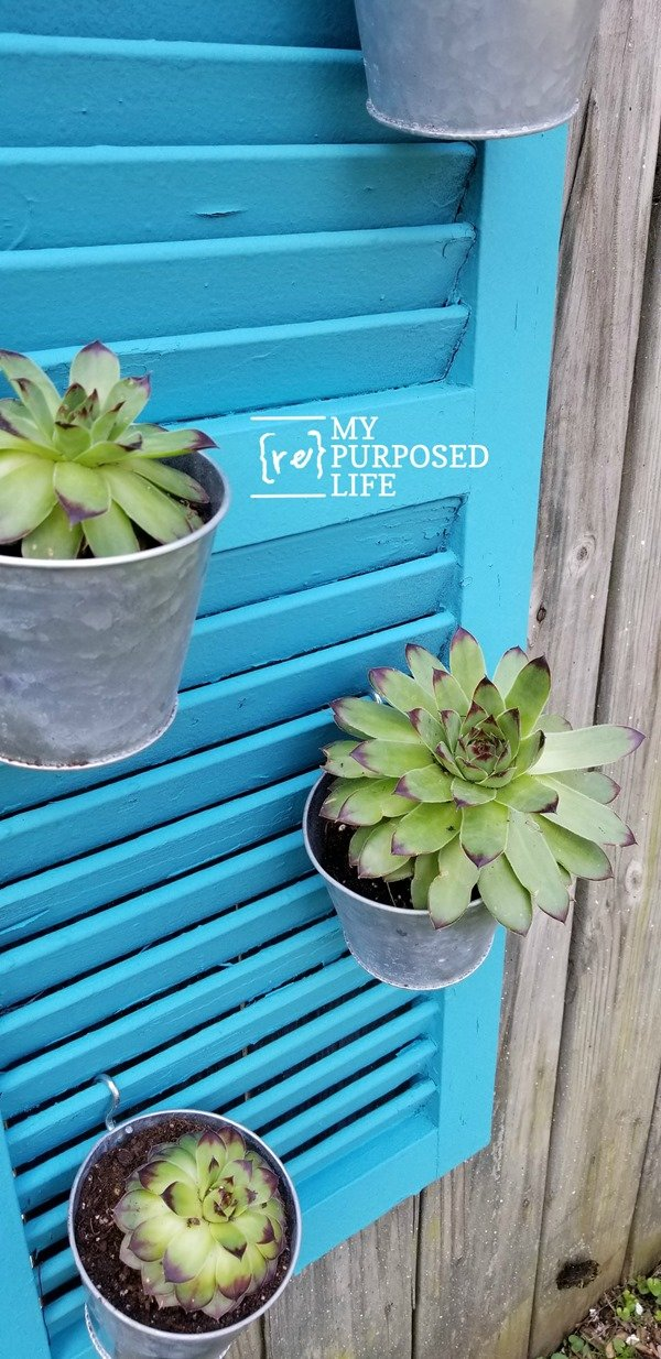 repurposed shutter hanging vertical planter MyRepurposedLife.com