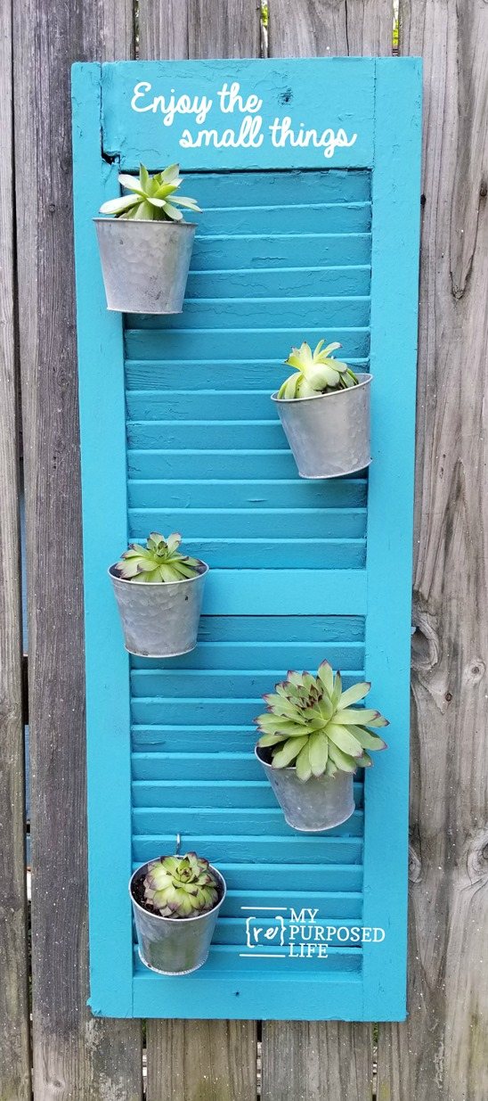 repurposed shutter holding galvanized pots with succulents MyRepurposedLife.com