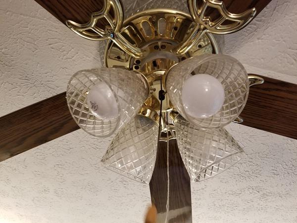 old school incandescent light bulbs