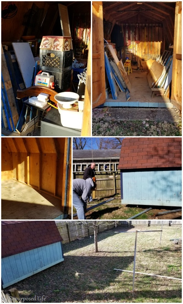 clean out and move garden shed
