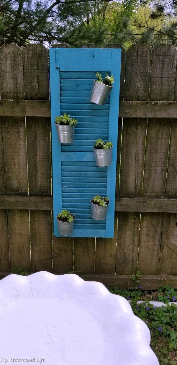 succulents hanging on shutter vertical garden