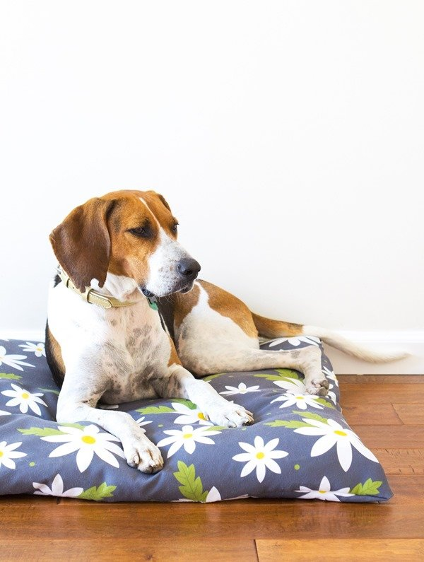 easy sew zippered dog bed cover
