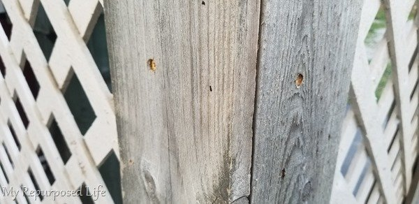 pre-drill holes in fence boards