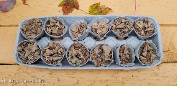 fire starters in egg carton