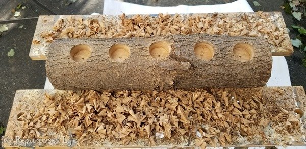 wood shavings for fire starters