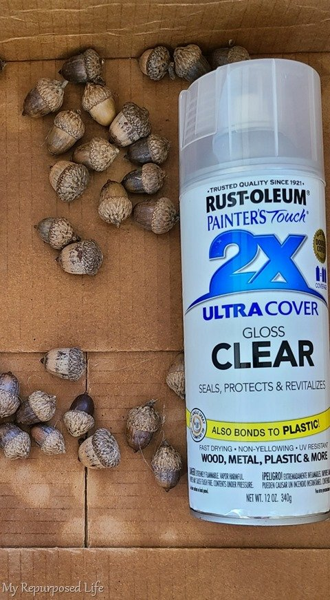 shine up acorns with spray sealer