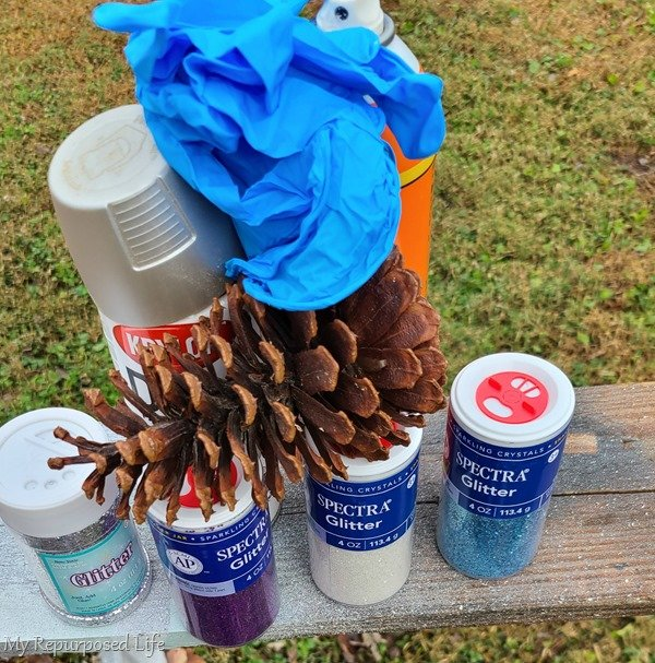materials to make glittered pine cones