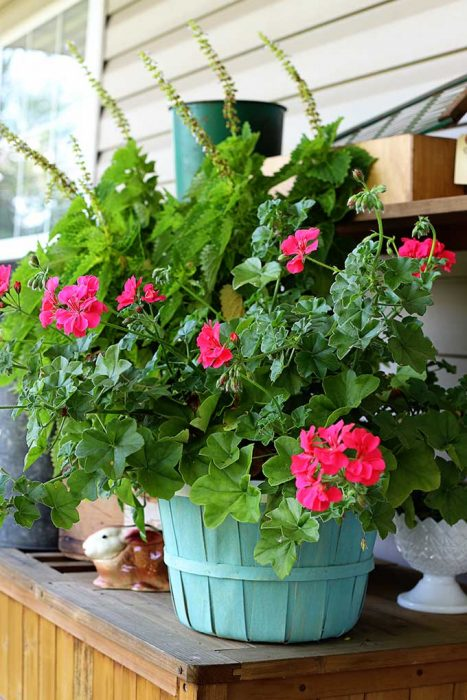 simple bushel basket planter